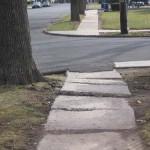 Heaving Sidewalk